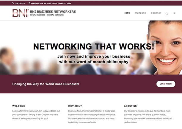 BNI Business Networkers -Cover